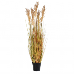 House Collection Plante Artificielle Sorghum